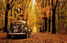 Автомобильные новости Воронежа, Автомобильные новости Черноземья, carzclub, автомобили, пресс-тур