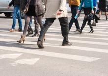 Автомобильные новости Воронежа, Автомобильные новости Черноземья, carzclub, автомобили, пешеходы, безопасность, штрафы ГИБДД